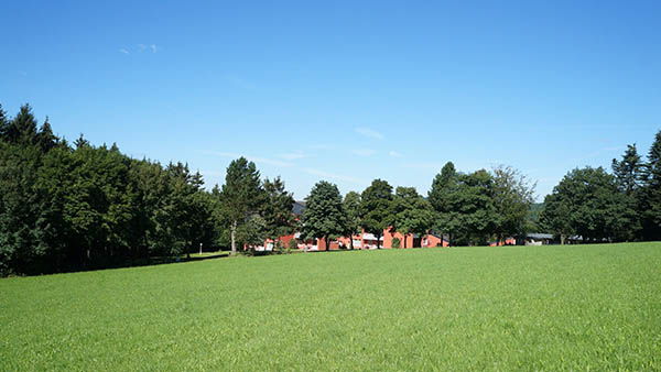 Yoga im Park im Sauerland direkt am Rothaarsteig